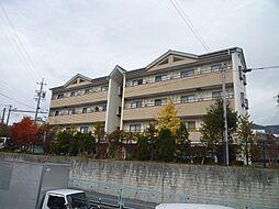 長野県茅野市仲町の賃貸マンションの外観