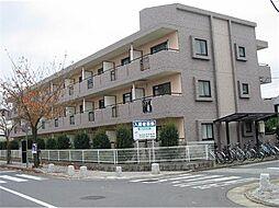 茨城県つくば市桜2丁目の賃貸マンションの外観