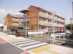 佐賀県佐賀市赤松町の賃貸マンションの外観