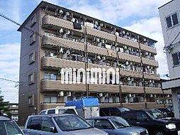 マルモハイツ[5階]の外観