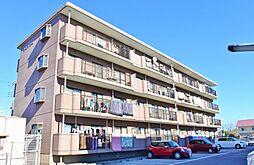 千葉県大網白里市ながた野1丁目の賃貸マンションの外観