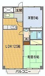 埼玉県新座市野火止1丁目の賃貸マンションの間取り