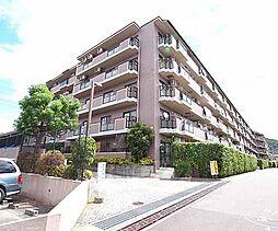 京都府宇治市莵道門前の賃貸マンションの外観