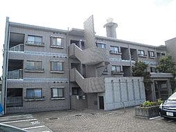 愛媛県松山市越智3丁目の賃貸マンションの外観