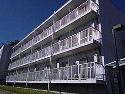 神奈川県横浜市瀬谷区宮沢1丁目の賃貸マンションの外観