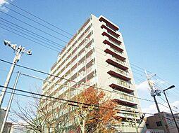 東中島第1土井マンション[10階]の外観