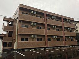 トレステーラUG(大分市横尾)[3階]の外観