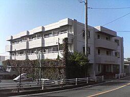 静岡県沼津市獅子浜の賃貸マンションの外観