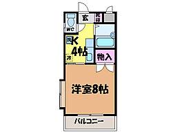 愛媛県松山市三町2丁目の賃貸マンションの間取り