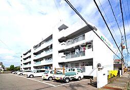 岡津マンション1[1階]の外観