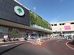 イオンタウン千種 (ショッピングセンター)(1300m)