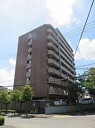 Sunsky 〜サンスカイ〜[8階]の外観