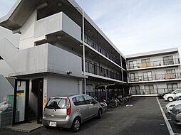 神奈川県座間市相模が丘5丁目の賃貸マンションの外観