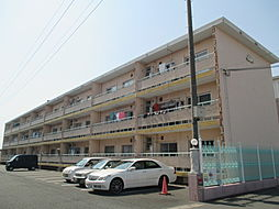 TriviaマンションB[305号室]の外観
