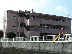 アネシス・ヒロ[2階]の外観