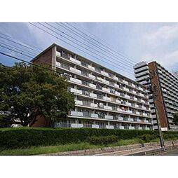 中駒九番団地6号棟[6階]の外観