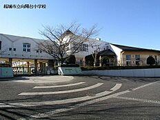 稲城市立向陽台小学校まで800m