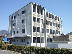 メゾンラヴィ[3階]の外観