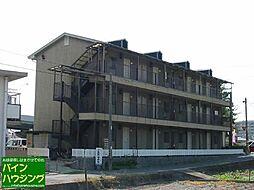 メゾンドールユキ[303号室]の外観