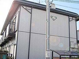 サングリーン住之江[203号室]の外観