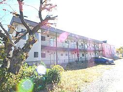 サンマルコ1[1階]の外観