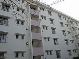 神奈川県川崎市宮前区白幡台2丁目の賃貸マンションの外観