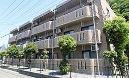 静岡県沼津市上香貫の賃貸マンションの外観