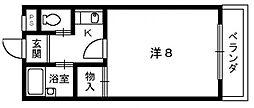メゾンドプラトン[1階]の間取り