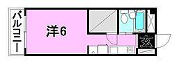 ミカハウス[501 号室号室]の間取り