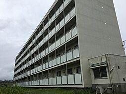 ビレッジハウス青木 1号棟[401号室]の外観