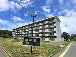 ビレッジハウス小浜3号棟[4階]の外観