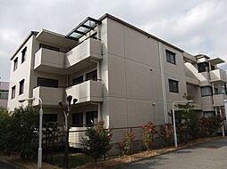 メゾンドール広田[0303号室]の外観