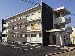 サン・ガーデンWINDOM中津東[305号室]の外観