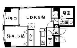 カジス六本松ビル[3階]の間取り