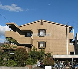 大阪府東大阪市花園東町3丁目の賃貸マンションの外観