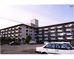 松山グランドハイツ[405 号室号室]の外観