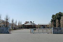 つくば市立谷田部中学校(1031m)