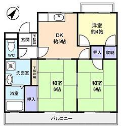 千葉県船橋市前原西6の賃貸マンションの間取り