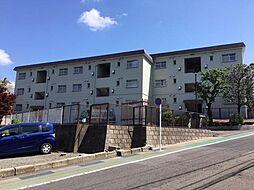 神奈川県川崎市宮前区土橋3丁目の賃貸マンションの外観