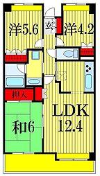 千葉県習志野市本大久保1丁目の賃貸マンションの間取り