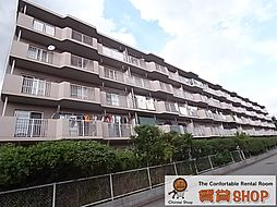 津田沼ハイツC棟[407号室]の外観