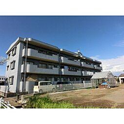 熊本県熊本市南区田迎2丁目の賃貸マンションの外観