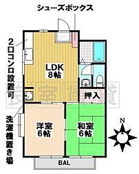 愛知県名古屋市昭和区川名本町1丁目の賃貸マンションの間取り