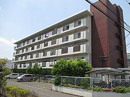テゾーロ博多南[1階]の外観