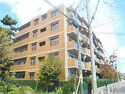 兵庫県芦屋市松浜町の賃貸マンションの外観