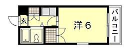 Calm西川口町[4階]の間取り