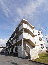 埼玉県ふじみ野市大井中央の賃貸マンションの外観