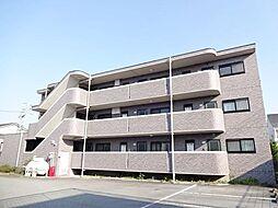 山梨県中巨摩郡昭和町西条新田の賃貸マンションの外観