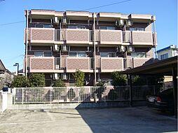 埼玉県加須市中央2丁目の賃貸マンションの外観