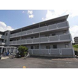 奈良県御所市東松本の賃貸マンションの外観